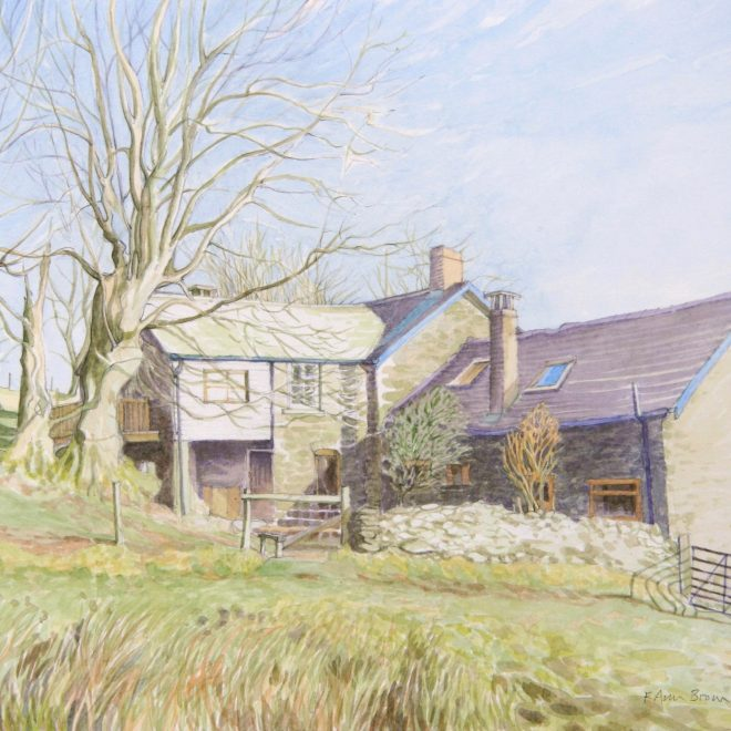 A Hint of Spring at Maenllwyd (Ann Brown)