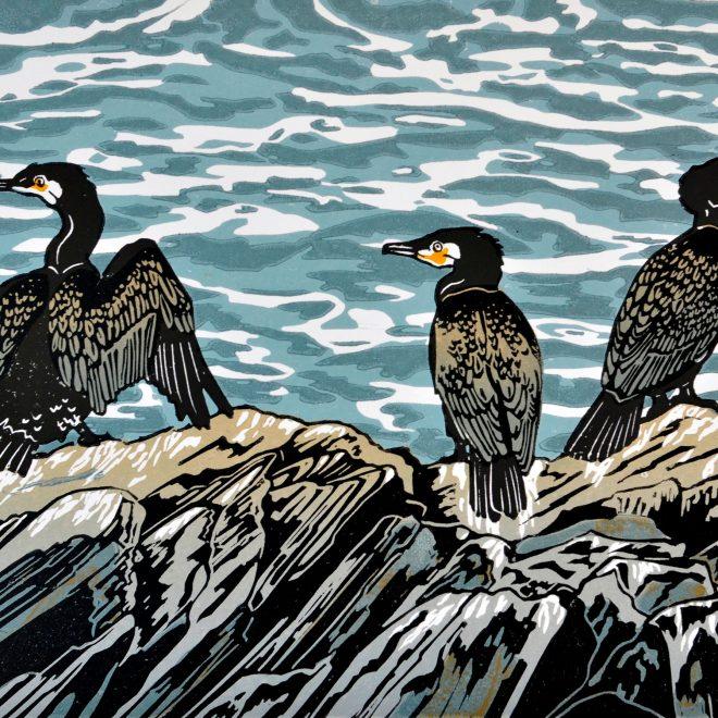 Cormorants (Nina Sage)