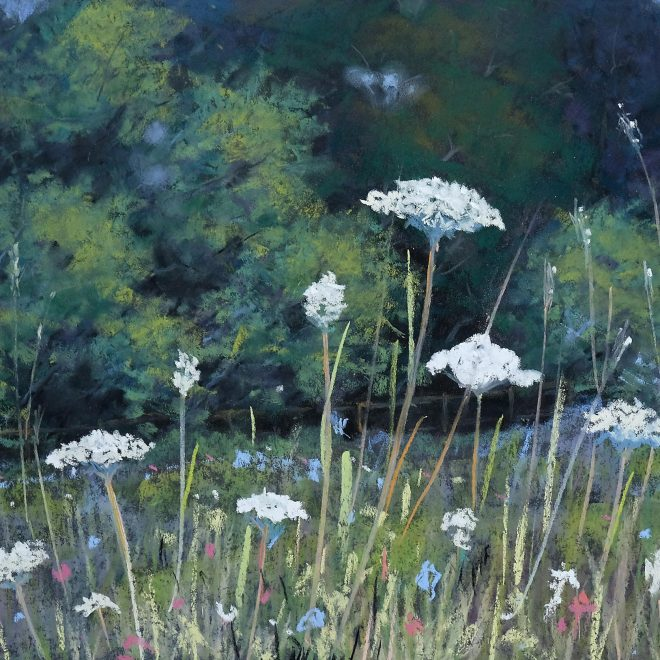 Cow Parsley (Ros Ridley)