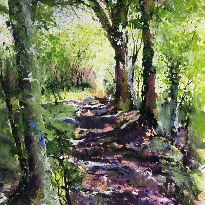 Dappled Light, Exmoor (Chris Lockwood)