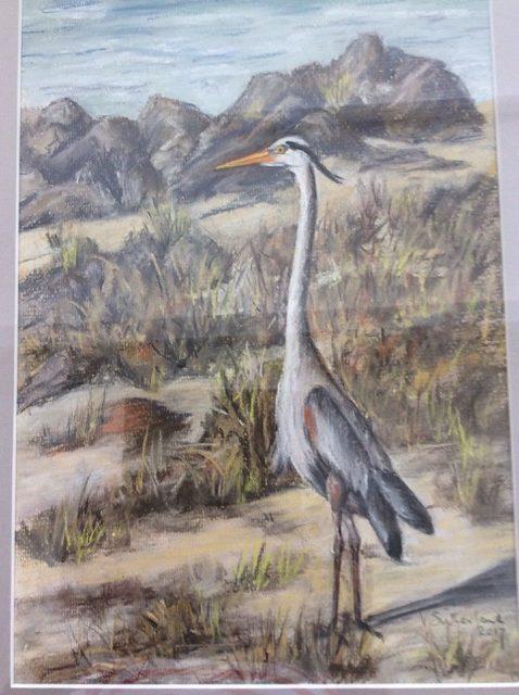 Florida Heron (Veronica Sutherland)