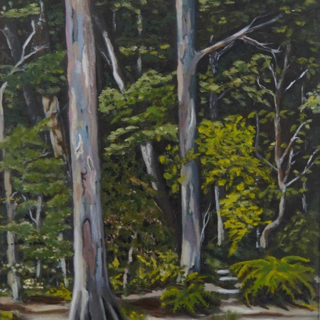 Into the woods (Gillian Coe)