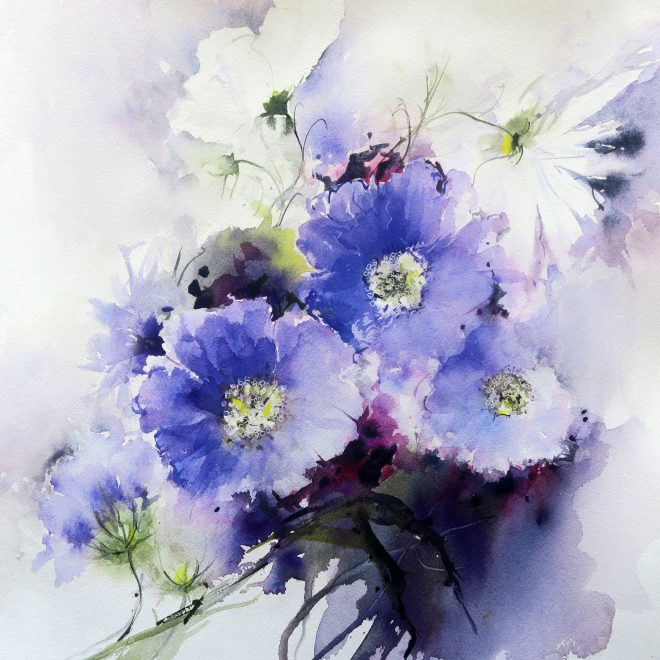 July Garden ( Scabious and Cosmos)  (Chris Lockwood)