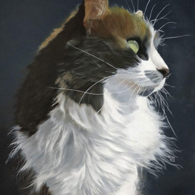Kat the cat (Freya Hoayun)