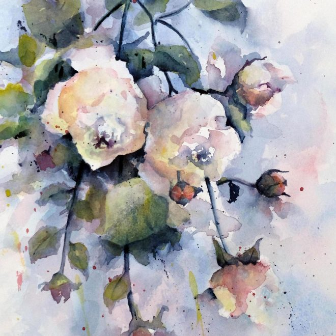 Late Roses (Ros Ridley)