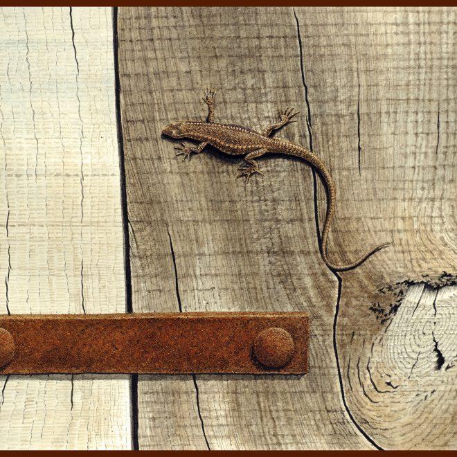 Lizard (Sean MacGarry)