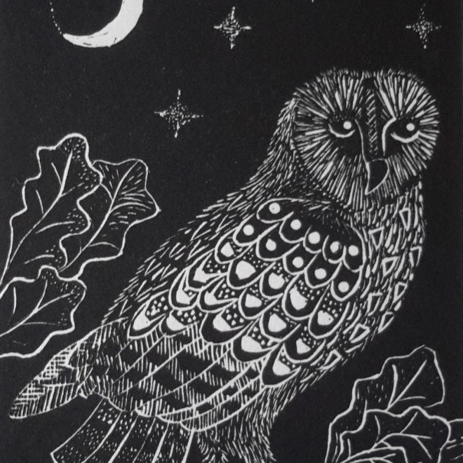 Owl and the Moon (Anna Pye)