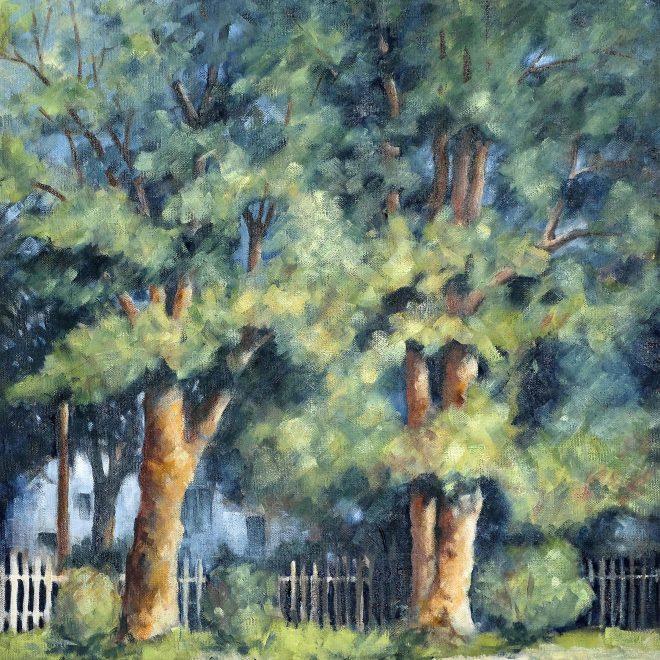 Plane Trees (Ros Ridley)