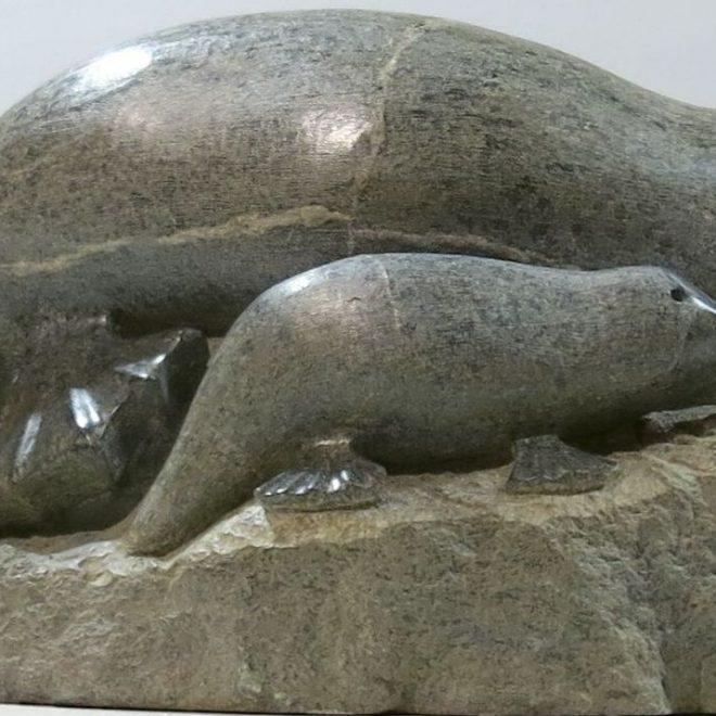 Platypus (Yvonne Jerrold)