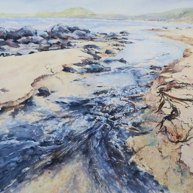 Sandy Banks and Seaweed (Chris Lockwood)