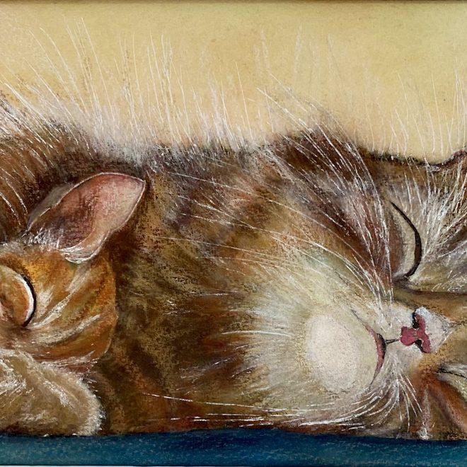Snuggled up (Christine Wilson)