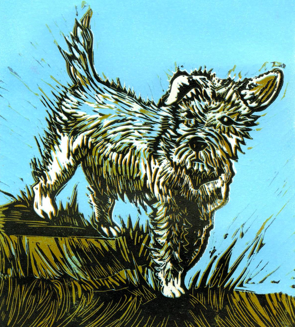 Terrier (Clare Trowell)