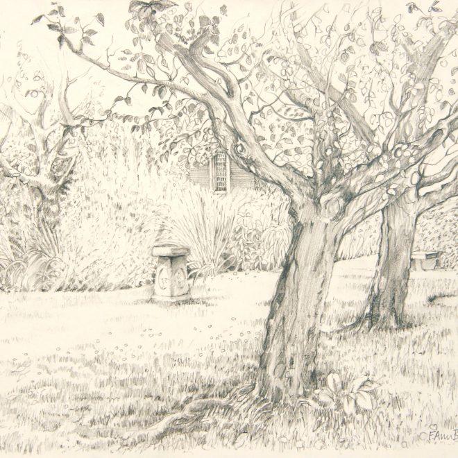 The Margaret Beaufort Garden (Ann Brown)