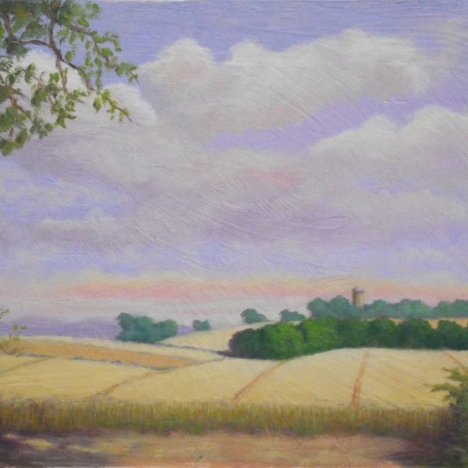 View from the Roman Road (Colin Hayes)