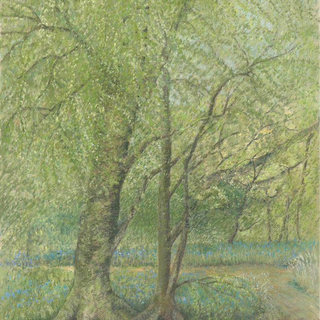 Blue-Bell-Woods-(Jenny-Wilson)