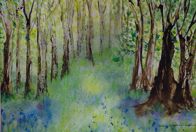 'Bluebell Wood'  Watercolour and Ink.     Sarah G Freedman
