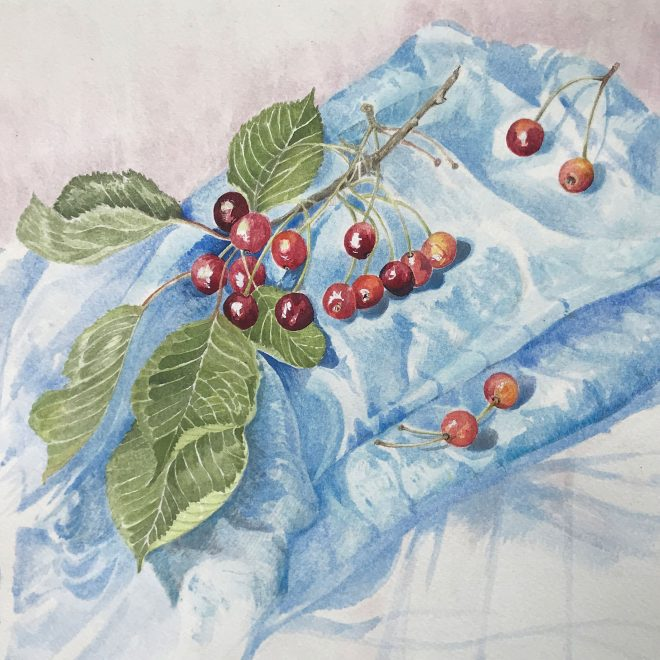 Cherries-on-a-blue-cloth-(Jenny-Wilson)