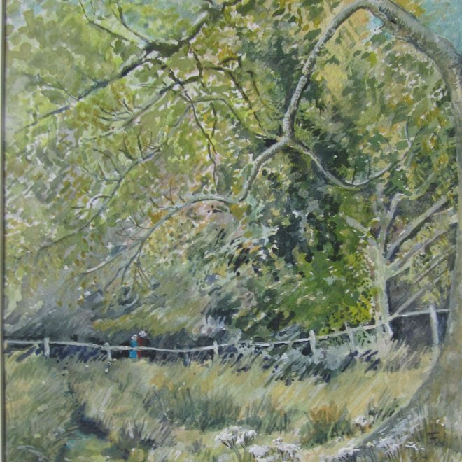 Knoydart-woods-(Jenny-Wilson)