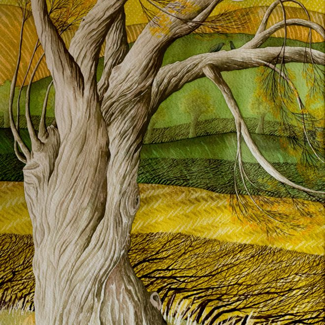 Old-Tree-(Vera-Rosenberry)