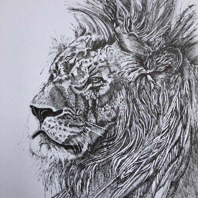 Portriat of a Lion (Mel Collins)